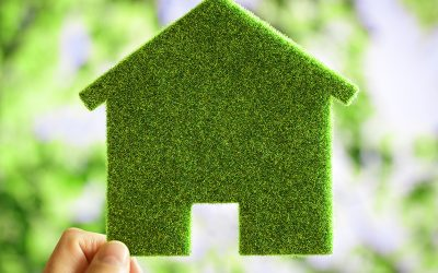 Eco Friendly Homes & Furniture Paving The Way For The Future